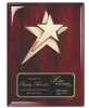 Rosewood Piano Finish plaque with Star Casting Wall Plaque Awards