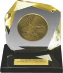 Sculpted Embedment Colored Acrylic Awards