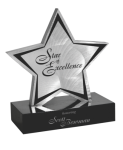 Brushed Silver Aluminum Star Employee Awards